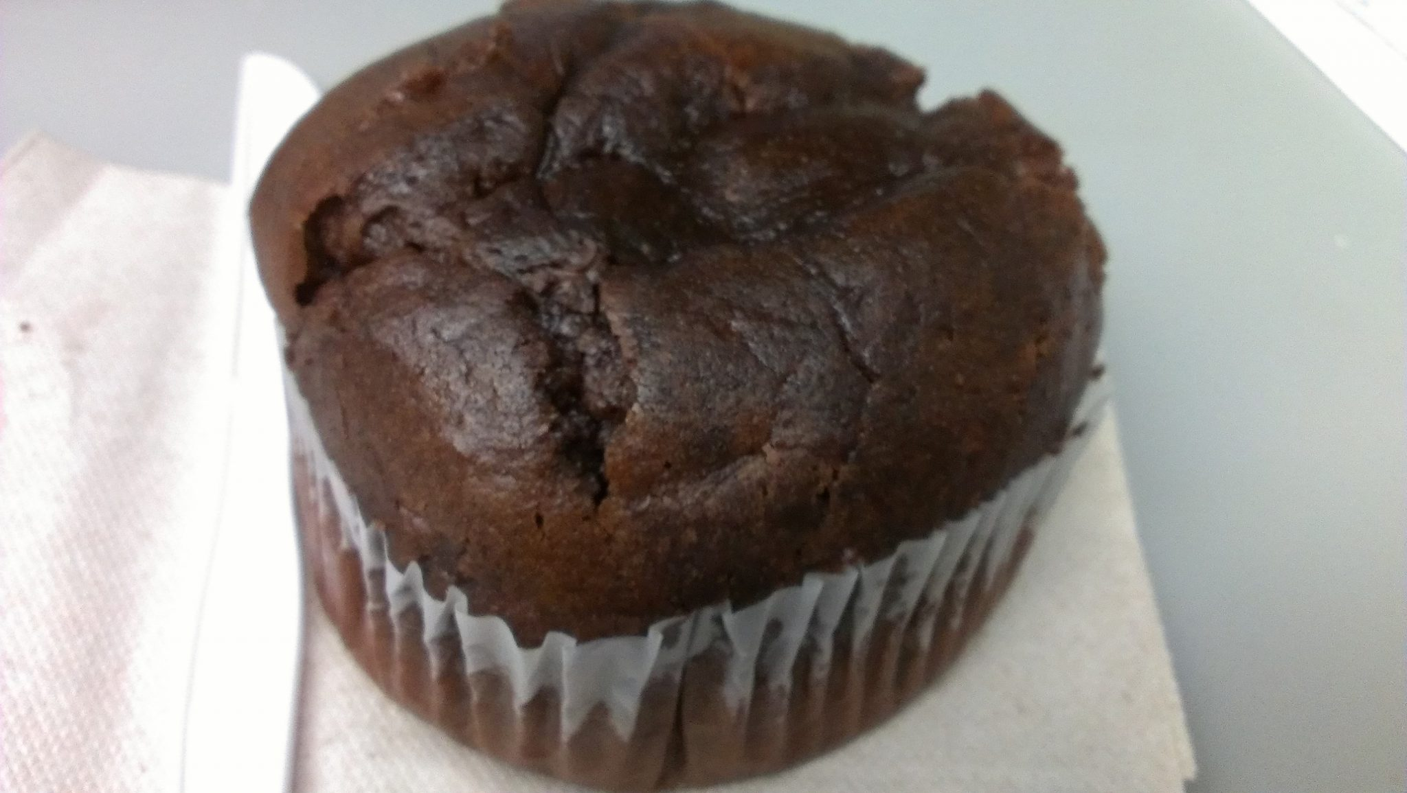 Kirkland Double Chocolate Muffin Calories