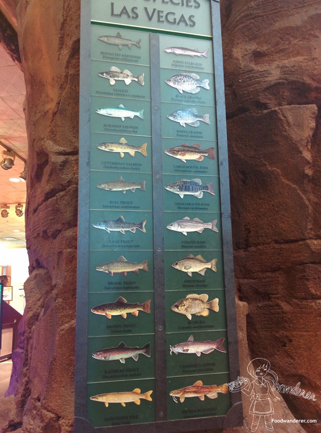 Bass pro shop outdoor attraction in vegas foodwanderer for Fish store las vegas